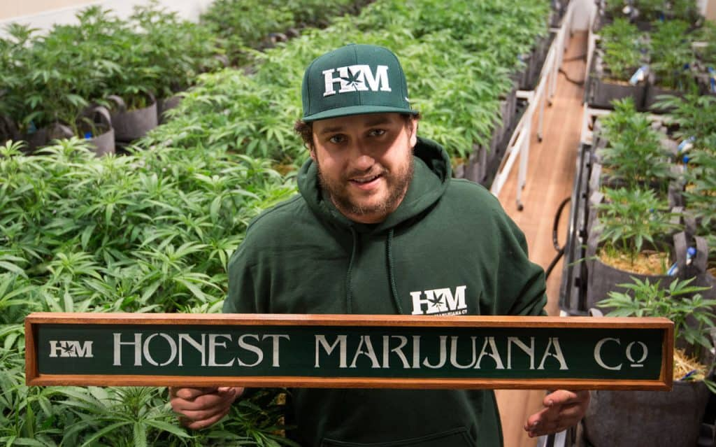 Honest Marijuana_Anthony Franciosi