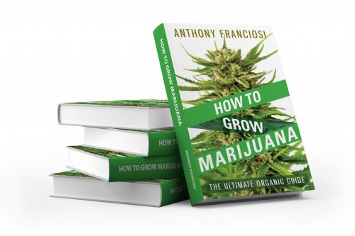 How To Grow Marijuana_3D