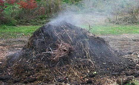 weed compost
