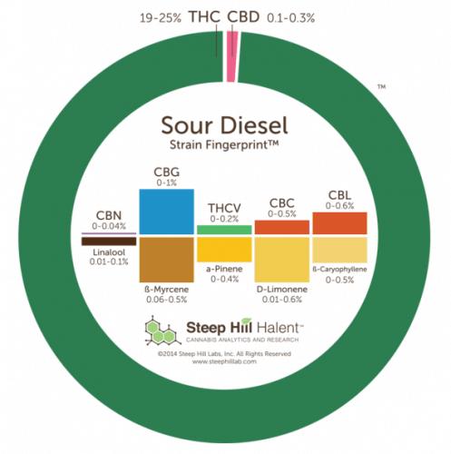 Sour Diesel THC CBD