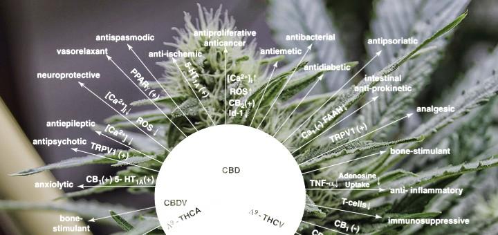 Delta-9-tetrahydrocannabinol