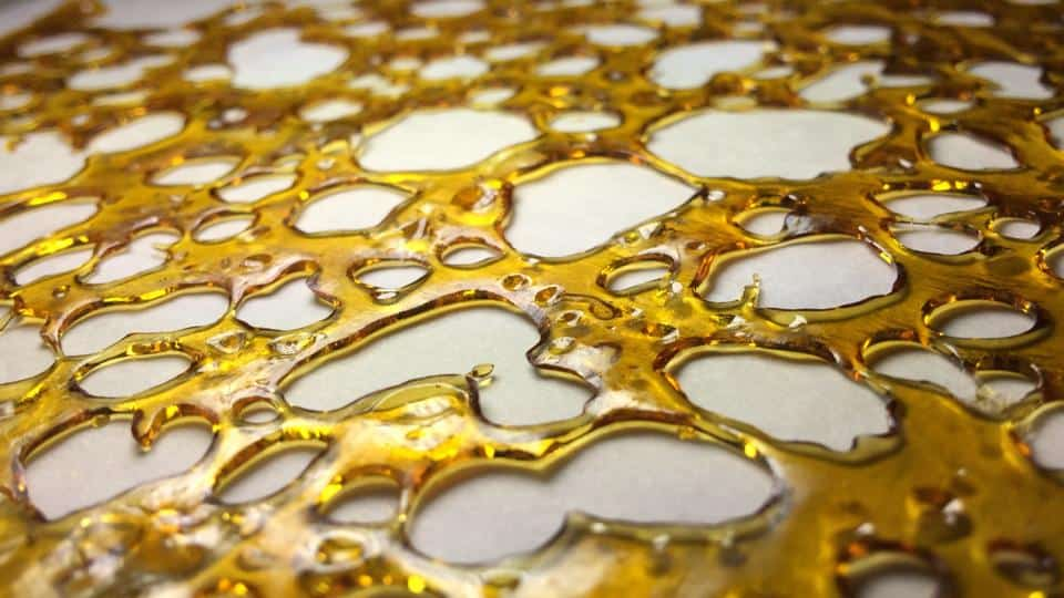 Shatter vs  Wax: What's The Difference? - Honest Marijuana