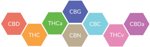 Cannabinoids Structure