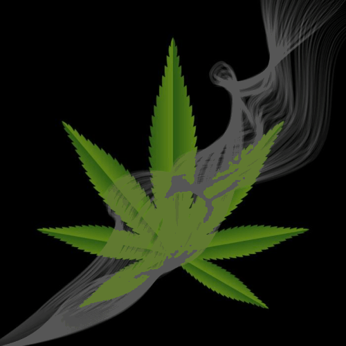 Gravity bong cannabis