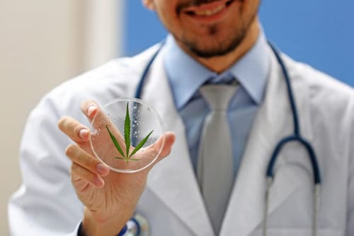 Doctor and Green Cannabis Leaf